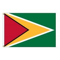 Guyana Nylon Flags (UN, OAS Member)