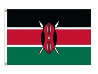 Kenya Nylon Flags (UN Member)