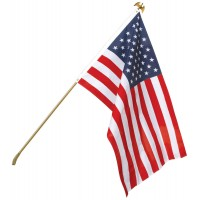 Economy U.S. Flag & Flagpole Set - Wall Mount